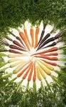 couleurs-93x150 dans ARTISTES PEINTRES