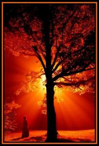 Mes pensées et mes sentiments dans PENSEE prière-203x300