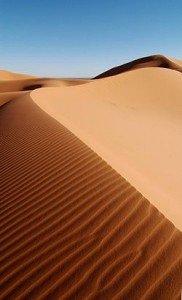 Respecter toutes formes de vie dans NATURE dune-de-sable1-182x300