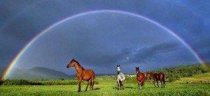 Et si nous avions déjà tout visité dans KARMA arcenciel-chevaux-300x138