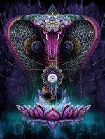La semence de la peur dans PEUR a-petit-cobra