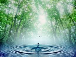 Comment devenir l'Ange que vous êtes dans ANGES nature