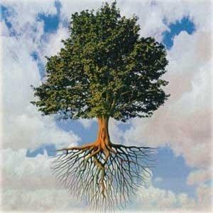 L'âme, voie de passage entre le corps et l'esprit dans AME de829300