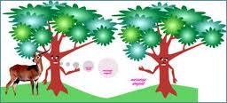 la communication des plantes dans PLANTES images-11